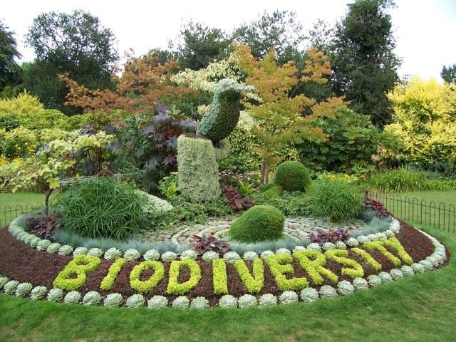biodiversity organic